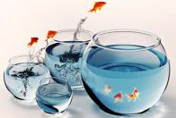 минерализация воды
