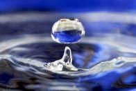 тухлая вода